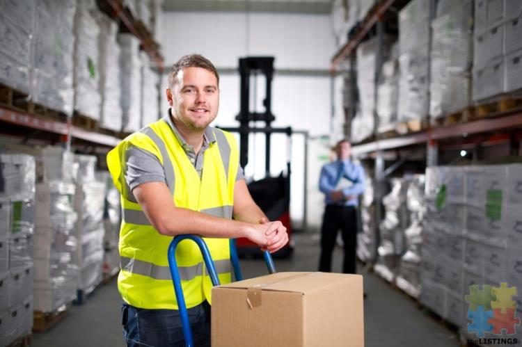 Assistant Accounts/Warehouse Operation Assistant
