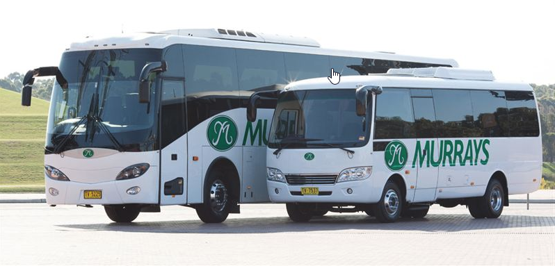 Coach & Bus Drivers (MR & HR)