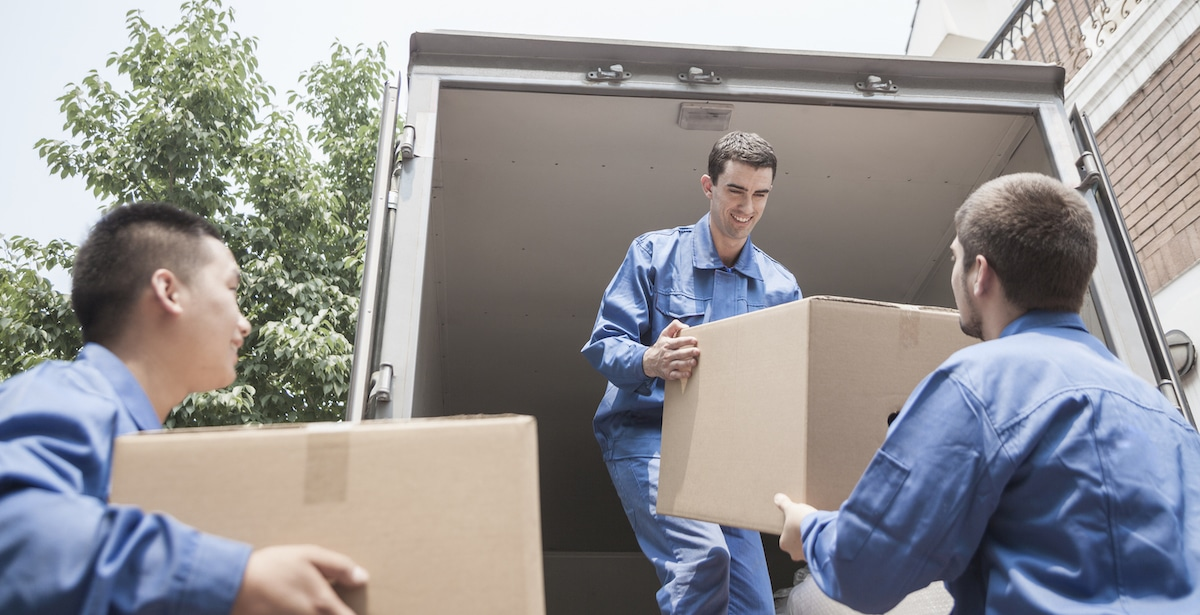 Labourer - Removals offsider