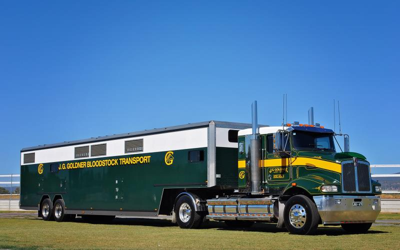 Thoroughbred Racehorse HC Truck Driver