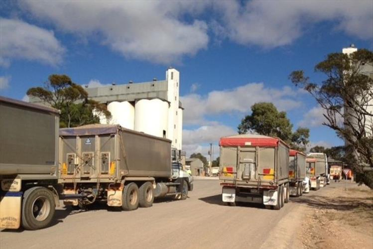 Experienced HC truck & Dog drivers WANTED Liverpool, NSW