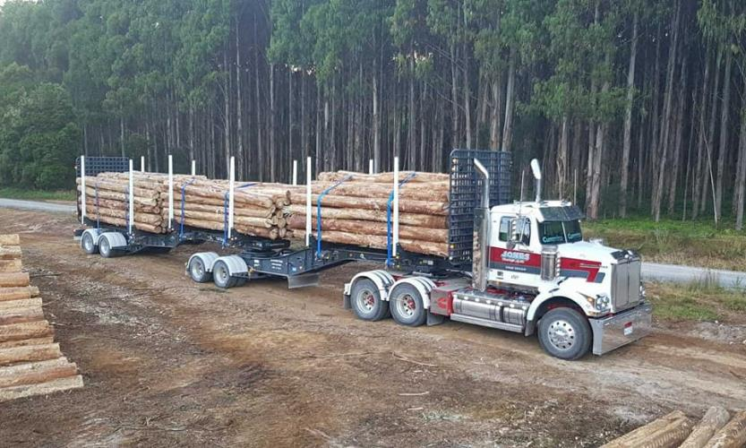Mini B Double Log Truck Driver - Townsville Area