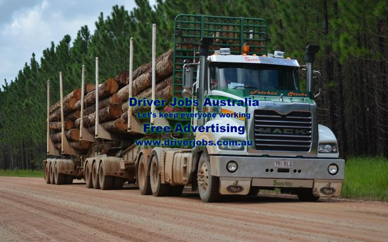 FORESTRY HAULAGE DRIVER - HC LICENCE