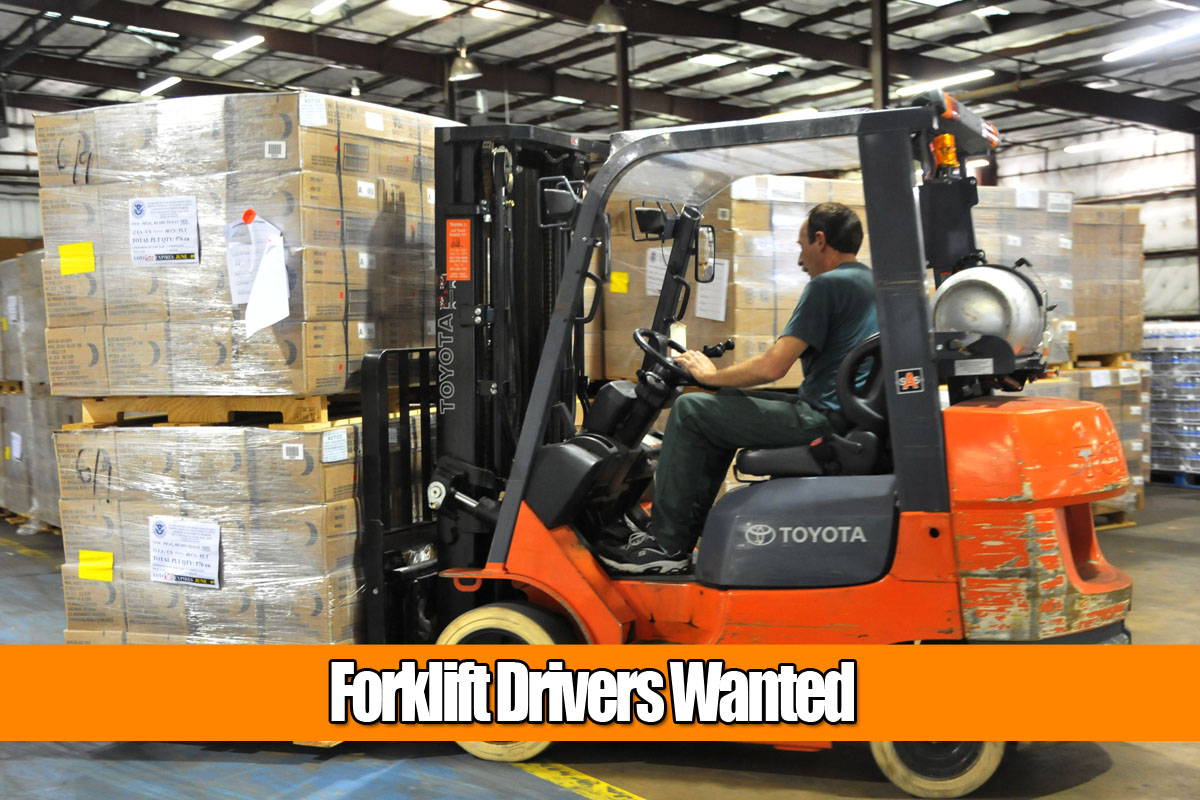 FORKLIFT OPERATOR ONGOING POSITION - BRISVEGAS
