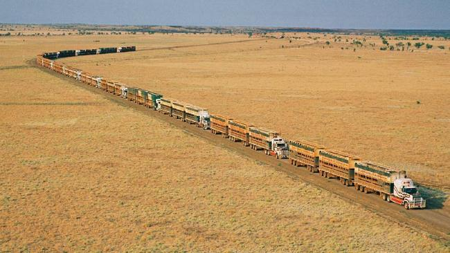 MC Road Train Driver - Cattle Station