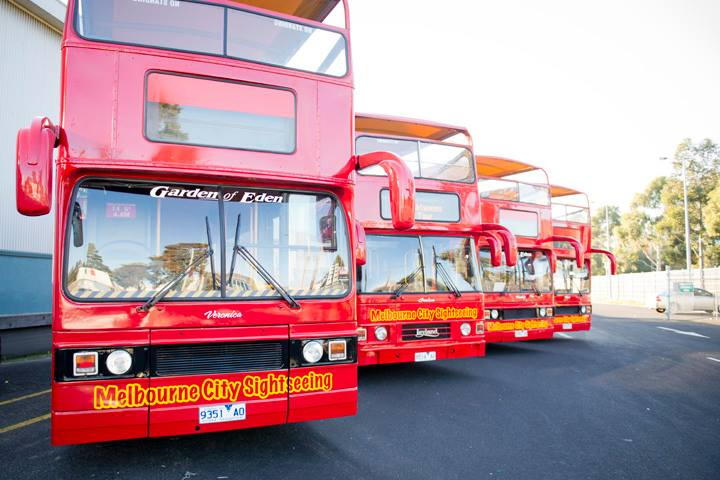 City Sightseeing Melbourne - Hop on Hop Off Casual Bus Operator
