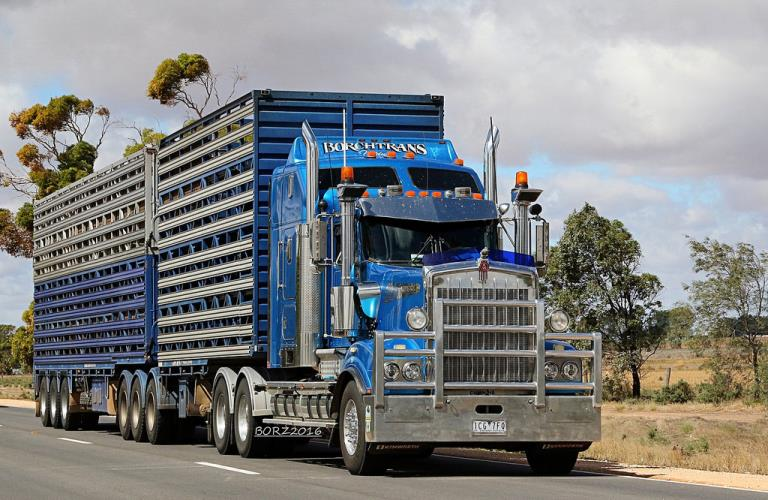 WANTED MC Livestock and Tipper Driver