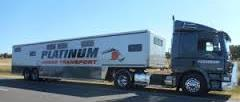 Platinum Horse Transport