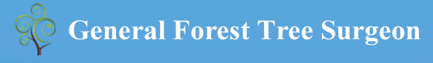 GENERAL FOREST TREE SURGEON