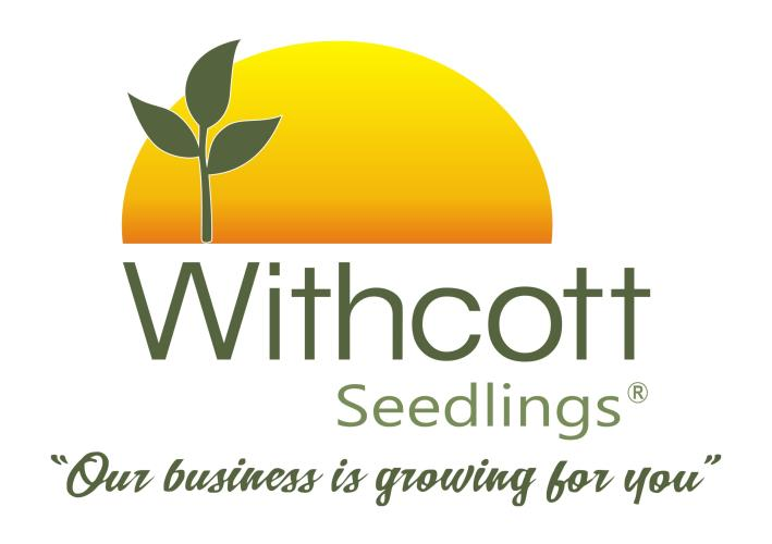 Withcott Seedlings